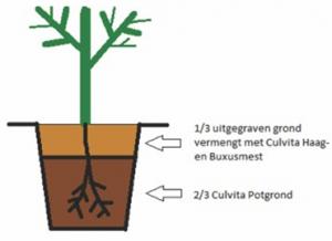plant handleiding