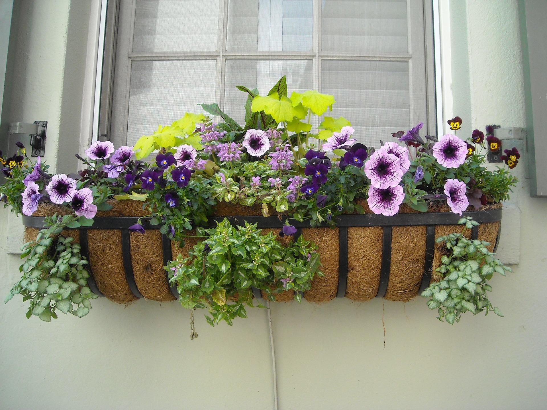 Bloembakken Voor Balkon.Tuin Opvrolijken Met Bloembakken Tuinkenners