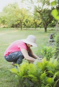 tuinplanten kiezen
